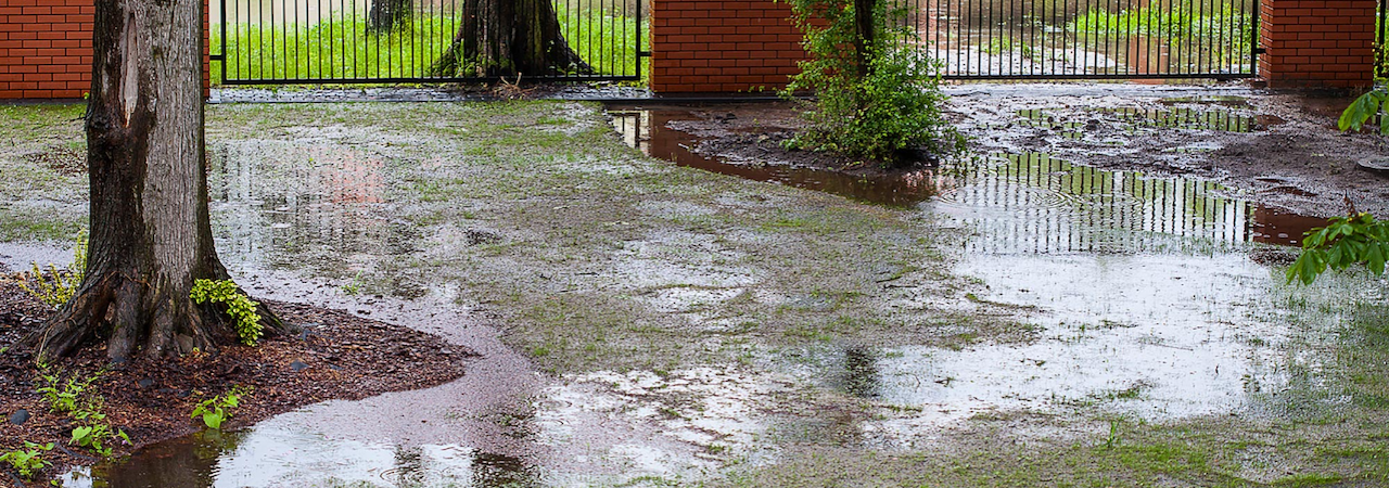 Drainage Problem?  Call Us Today!